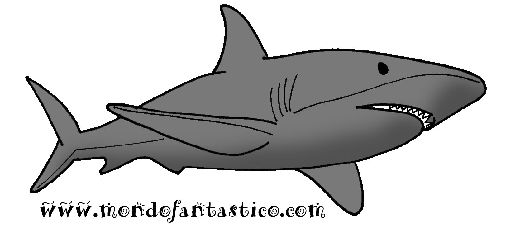 Lo squalo colora lo squalo for Pesci da disegnare per bambini