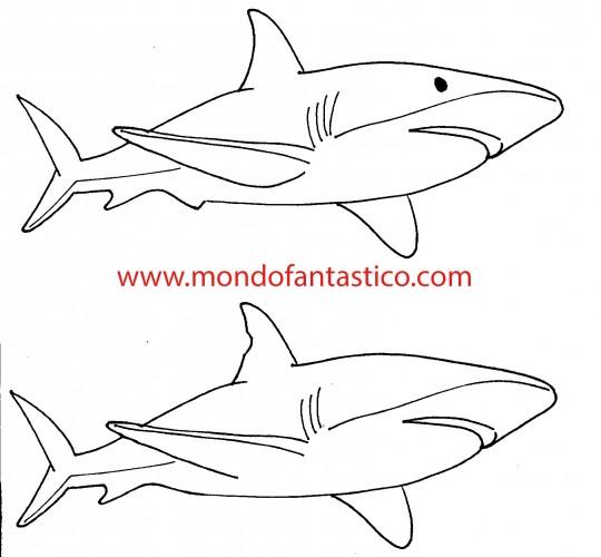 Trova le 5 differenze tra i due squali for Squalo da colorare